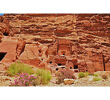 Dwellings in Petra Photographic Print