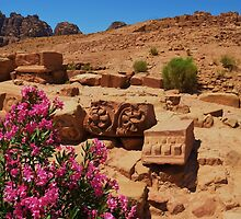 Carvings And Flowers At Petra by Malcolm Snook