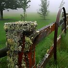 Barriers and mist by Craig Shadbolt