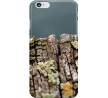 On the Edge iPhone Case/Skin