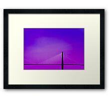 Spanning the Air © Framed Print