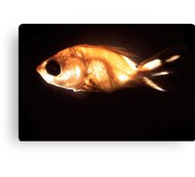 Glowfish Canvas Print