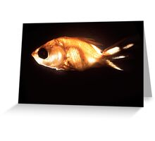 Glowfish Greeting Card