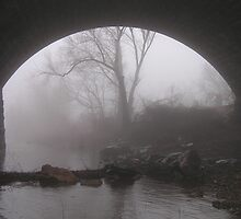 Rockville Fog by James Wheeler