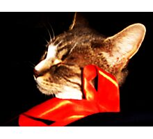Behind the Red Ribbon Photographic Print