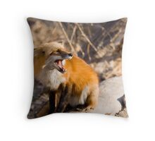 Fox Defending Meal Throw Pillow