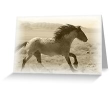 Run Wild Greeting Card