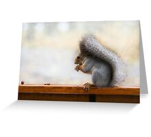 Squirrel on a bench and some nuts Greeting Card