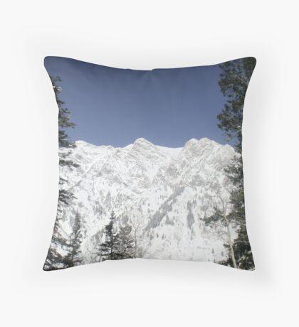 Peruvian Throw Pillow