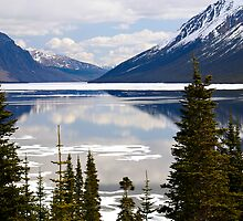 Tutshi Lake, Yukon, Canada by Margaret Goodwin