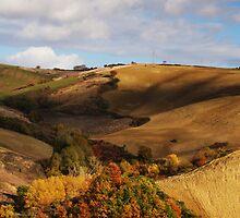 Autumn view by epsylonlyrae