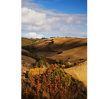 Autumn view Photographic Print