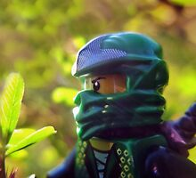 How to defeat Jungle Friends: Use a Green Ninja by bricksailboat