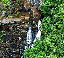 Lower Fitzroy Falls by Warren. A. Williams