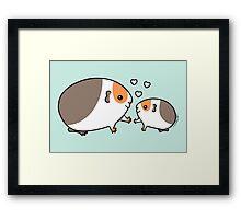Baby Guinea-pig Framed Print