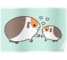 Baby Guinea-pig Poster