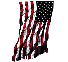 USA Stars and Stripes Photographic Print
