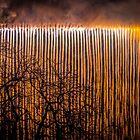 Bristol's Waterfall of Fire by Robbie Labanowski