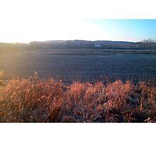 Autumn Field Photographic Print