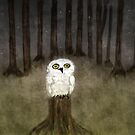 the white owl by Bridgett Ferguson