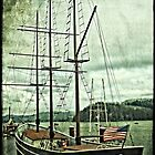 Cape Foulweather Sailing Ship by thomr