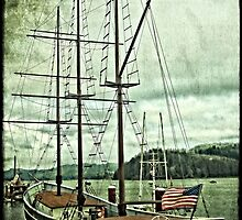 Cape Foulweather Sailing Ship by Thom Zehrfeld