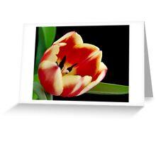 Peach Melba Greeting Card