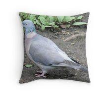 A Pidgeon Throw Pillow
