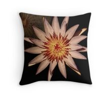 vibrant lily, bird's eye view Throw Pillow