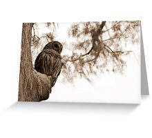 Wacissa Owl in Sepia Tone Greeting Card