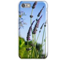 Lavender Fine Art Print Photography iPhone Case/Skin