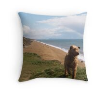Down Chesil Beach Throw Pillow