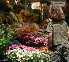 Flowers In Rome by 2Andys
