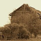 Old Barn and Truck by Kristie King