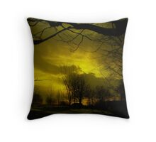 Golden Sunset In Michigan Throw Pillow