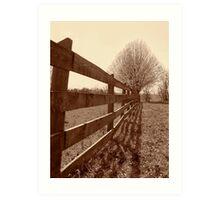 Fence & Tree Art Print