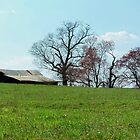 Old Farm on Hill by Kristie King