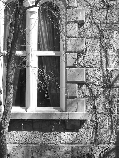 Window by heathernicole00