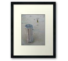 sandhill Framed Print
