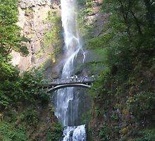 Multnomah Falls by Edith Farrell