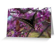 Sweet refreshments Greeting Card