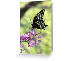 My antennae - all the better to hear you with! Greeting Card