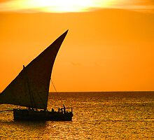 A dhow from Zanzibar  by Sanchita  Mukherjee