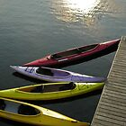Kayaks Sunset by Shell59