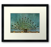 The Colourful Peacock Framed Print
