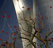 Disney Concert Hall with Coral Tree by Cathy L. Gregg