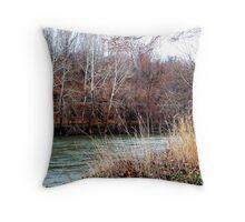 River bank Throw Pillow