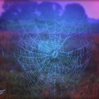 Web of Glory by Shell59