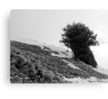 On Top of Mt. Rigi Canvas Print