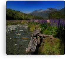 What Do You Say When Purple Fields Of Fiordland Smile At You? Canvas Print
